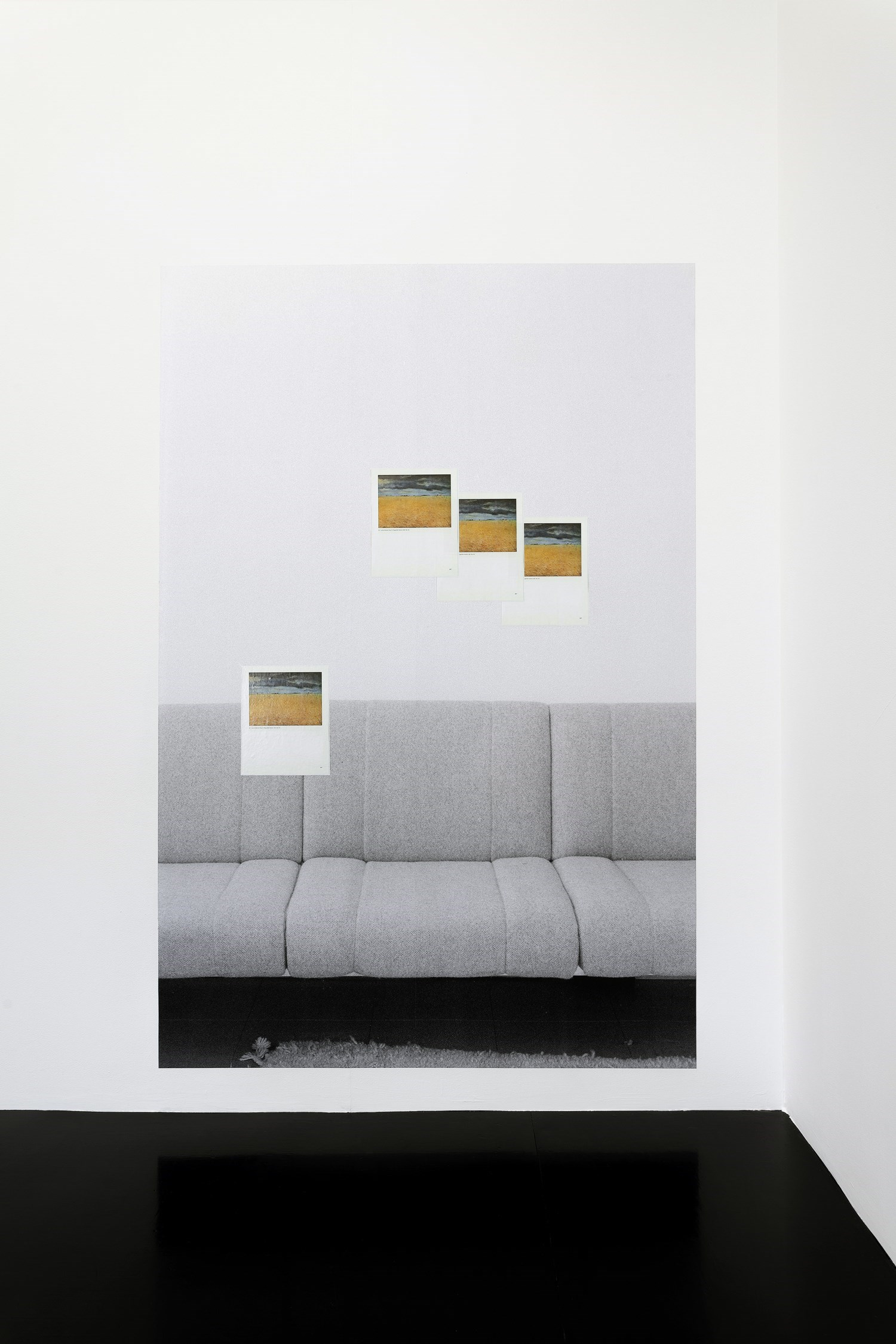 Field of Rye. Seeland (Laurits Anderson Ring)—Dessauer Strasse,<br />220 cm x 130 cm, b&w prints and laser prints, 2016<br />Installation view Koppe Astner, Glasgow